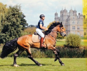 The M&M is a very useful VSD saddle and you don't have to have a Mountain and Moorland to use it, Here's John and Sundance, his Drum Horse Cross enjoying theirs.