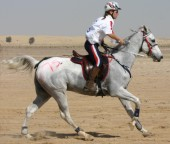 Sarah & Simbar, comfortably riding 100 miles in her ReactorPanel Saddle at the World Endurance Championship 2006