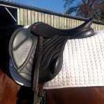 Comfort Elite Elevation Jump Saddle by Saddle Exchange Saddling Solutions